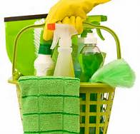 home cleaning supplies in a bucket